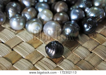 Raw Fiji Black Lip Oyster Black Pearls