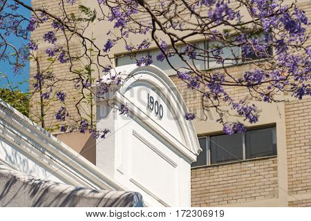 Art Deco Building With Jacaranda Tree Branches On Foreground
