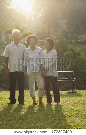 Group portrait of healthy Asian seniors retiree walking at outdoor nature park, in morning beautiful sunlight at background.