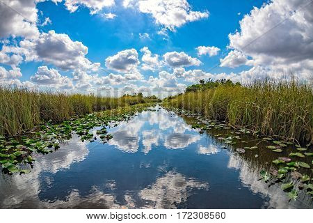 Florida Everglades View Panorama Landscape