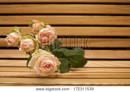 Pink rose bouquet closup on a wooden bench background