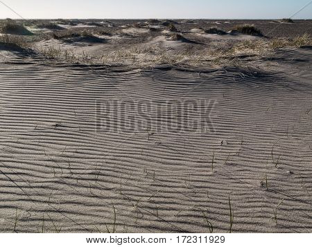 view of textured beach sand on a dune as the wind blows the sand over the edge of the dune.
