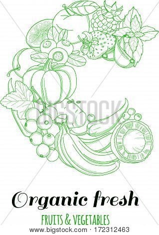 Letter C pattern logo of groceries organic farm fresh fruits and vegetables. Vector illustration logotype. Outline line flat style design. White backdrop.