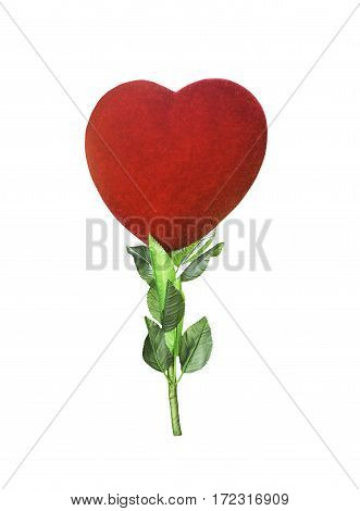 Red heart with green leaf isolated on white with clipping path