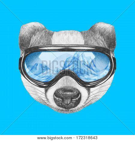 Portrait of Badger with ski goggles. Hand drawn illustration.