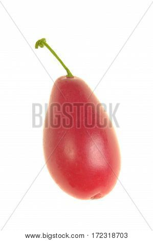 cornelian cherry red isolated on a white background