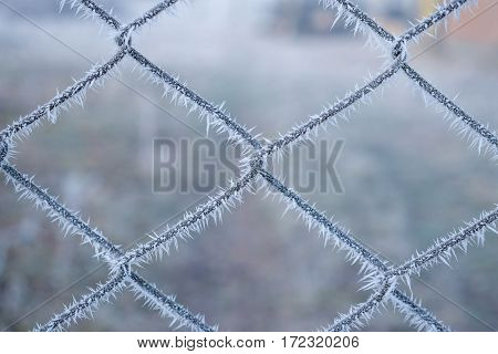 Fence netting in snowflakes. Winter background. Frost fence,