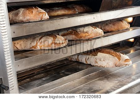 Brown Loaves Of Bread Out Of Oven