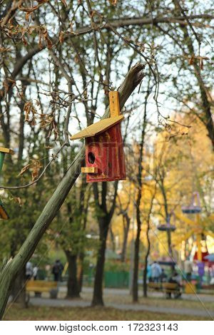 Nesting box hanging on the tree park in the summer