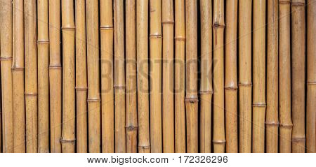Thai style bamboo house wall panorama .