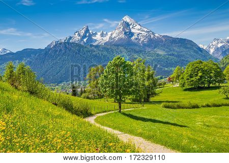 Idyllic Scenery In The Alps With Hiking Trail And Green Meadows In Summer
