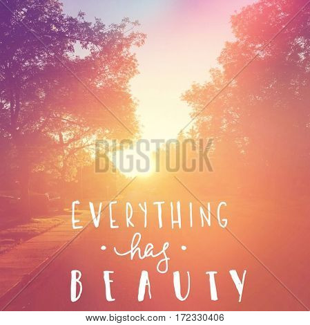 Inspirational Quote -  Everything has beauty