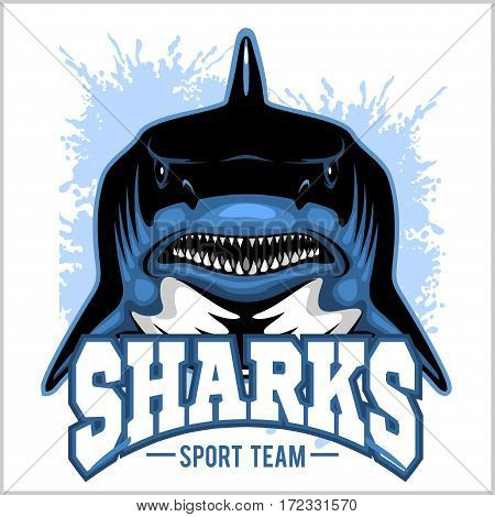 Strong sharks sports mascot on white background.