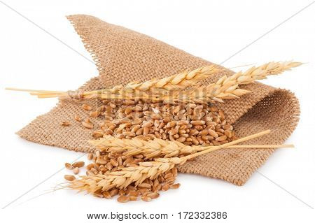 Bunch of wheat and ears on sacking