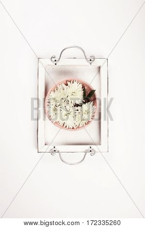 Close up of flowers floating in bowl of water on white background