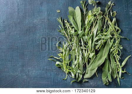 Bundle Of Fresh Italian Herbs