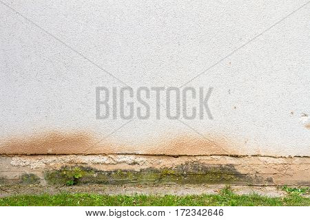 White brick and plastered wall background with some grass