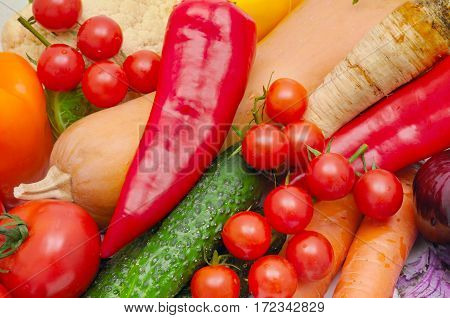 bright background of ripe vegetables and herbs
