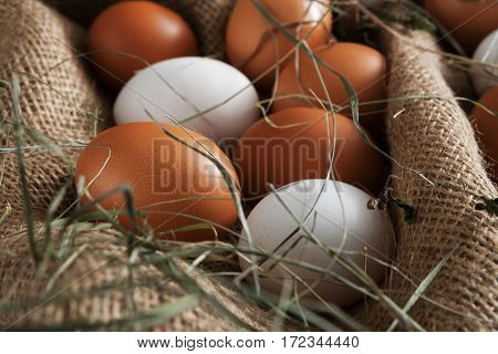 Poultry farm background. Fresh brown and white eggs on burlap with hay. Closeup on sacking. Rural still life, natural healthy food concept.
