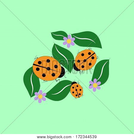 Ladybird isolated. Illustration ladybug on green background. Cute colorful sign red insect symbol spring summer garden. Template for t shirt apparel card poster Design element Vector illustration