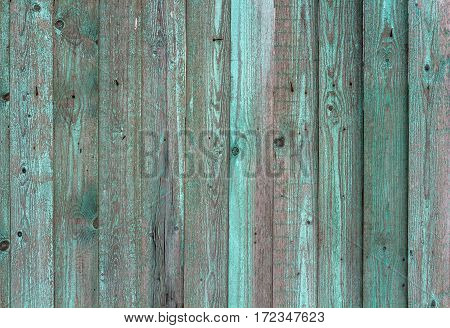 Several of the old board with peeling green paint. Fragment of the fence