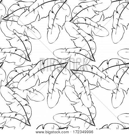 Seamless Pattern Bird Feather A Coloring. Vector Illustration