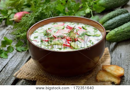 Yoghurt cold soup with radish cucumber and dill on woodwn table