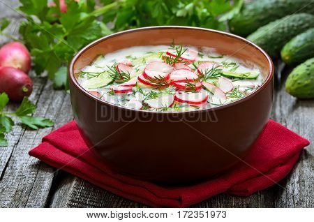 Yoghurt cold soup with radish cucumber and dill on wooden table.