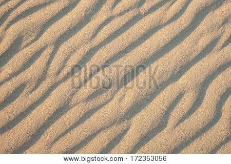 The last light of sunset illuminates ripples in sand dunes in Little Sahara on Kangaroo Island, South Australia, Australia. Sand dunes texture.