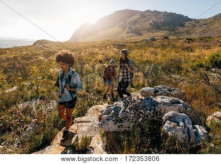 Group of hikers on a mountain. Young people on mountain hike.
