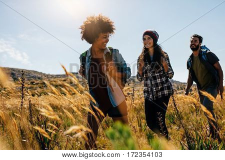 Happy group of friends hiking together on a summer day. Group of friends on walk through countryside.