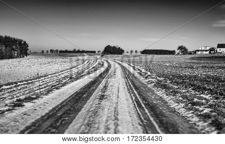 Scenic Countryside Road Across Farmland in Winter