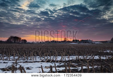 Scenic Sunrise Sky over East European Farmland in Winter