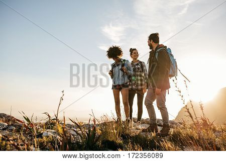 Group of people hiking in nature on a summer day. Three young friends on a country walk.