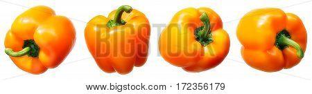 Sweet orange pepper isolated on white background