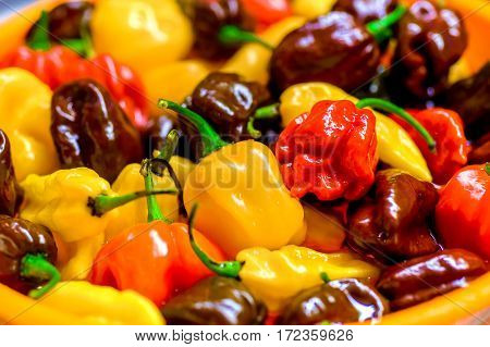 Different Variety Of Hot Peppers - A Bunch Of Chilies.