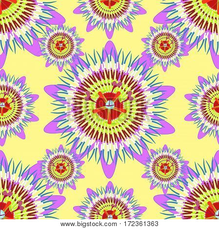 Seamless Pattern Passion Flower Blue Tropical Fruit  Vector Illustration