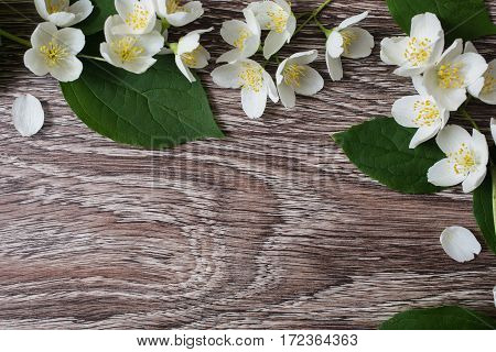 Frame of white flowers and jasmine petals lie on the wooden background. Wedding invitation card. Space for text and design.