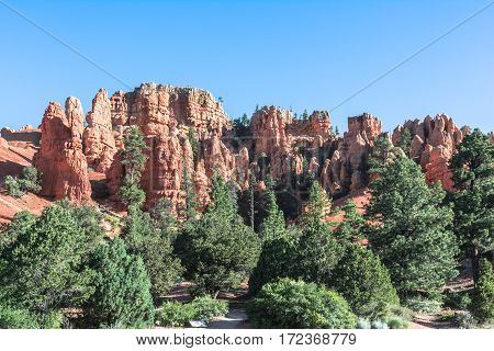 Red rocks in Red Canyon in Dixie National Forest, Utah