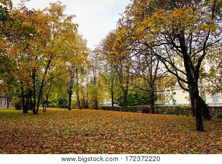 Landscape Of Autumn In Vyborg, Russia