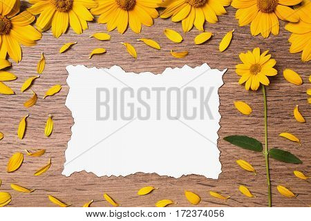 Calcined decorative sheet of white paper surrounded by yellow flowers and petals. Creating a creative summer card on a wooden background. Composition with natural motifs. Template for congratulations.