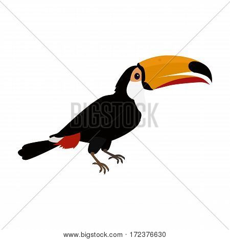 Toucan vector. Animals of rainy Amazonian forests in flat design. Fauna of South America. Wild life in tropics concept for posters, childrens books illustrating. Beautiful toucan isolated on white.
