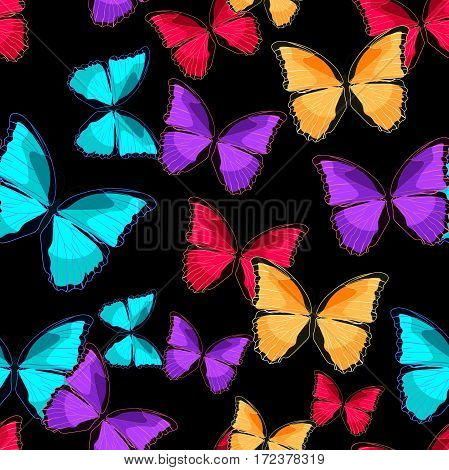 Seamless Pattern The Butterfly Blue Morpho Monarch Vector Illustration
