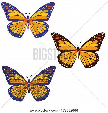 set of colored mosaic butterflies on whith background. isolated. vector illustration.