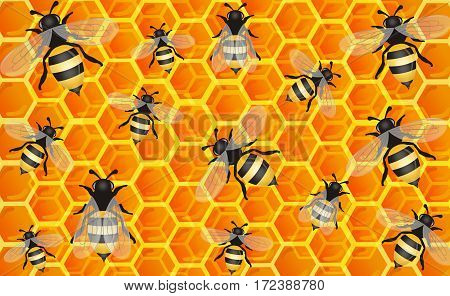 Sweet Honey Comb with Bees Background illustration