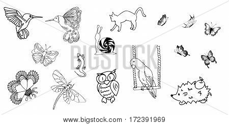 Vector image hand drawn, animals and insects.