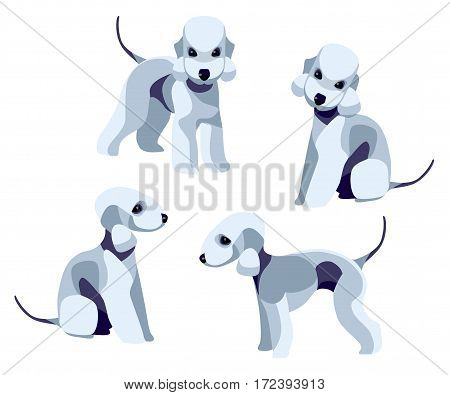 Illustration of Bedlington Terrier on white background