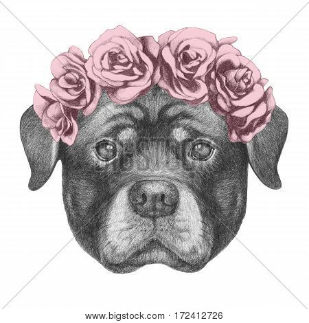 Portrait of Rottweiler with floral head wreath. Hand drawn illustration.