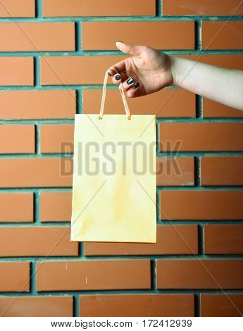 Light Yellow Shopping Bag In Female Hand On Brick Wall