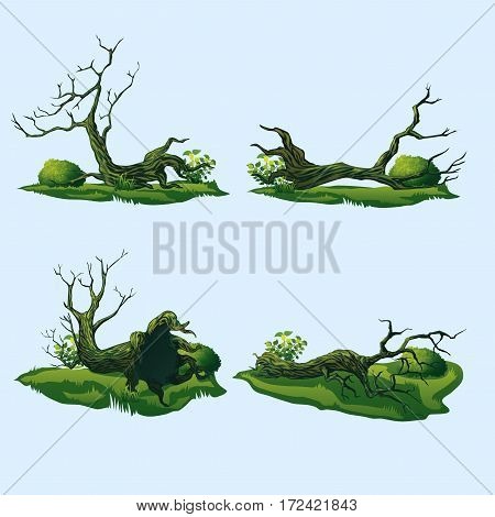 A high quality fallen trees with a curved crown. Isolated set of four fallen trees.